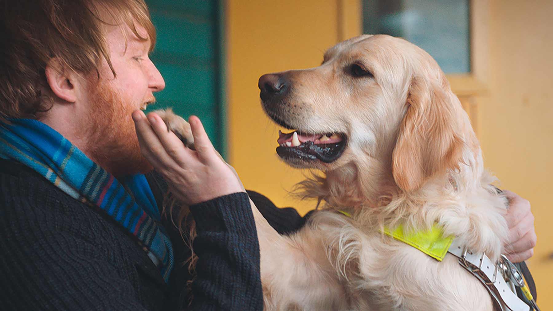 Dieser Hund kann Burger aufgrund ihres Geruches aufspüren Burger-King-Whopper-Dog_02
