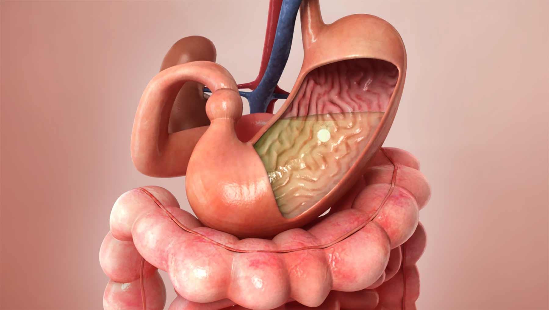 Die Reise einer Aspirin-Tablette durch den menschlichen Körper