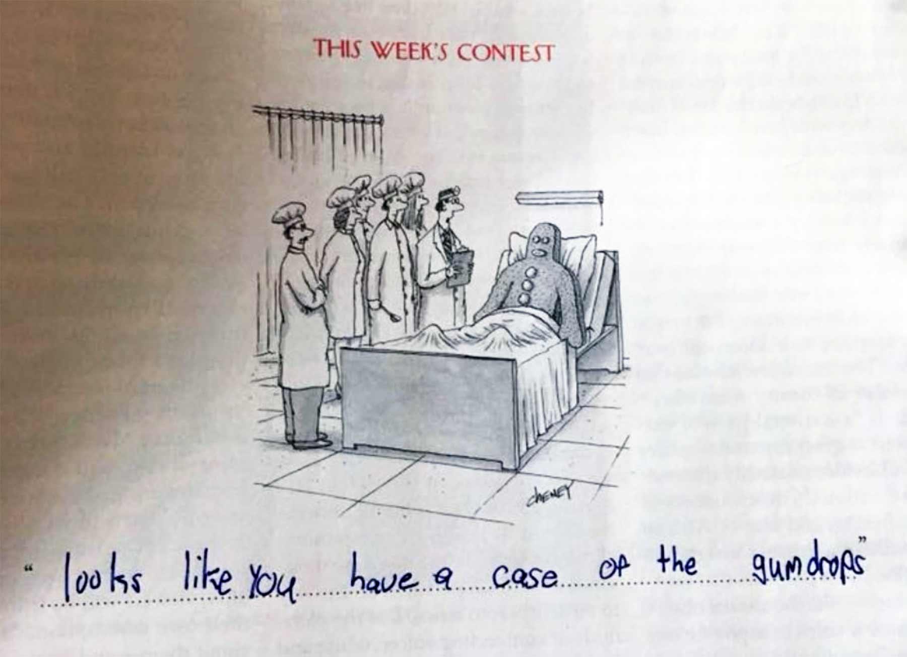 Die urkomischen Bildunterschriften einer 9-Jährigen bess-kalb-alice-kind-bildunterschriften_05