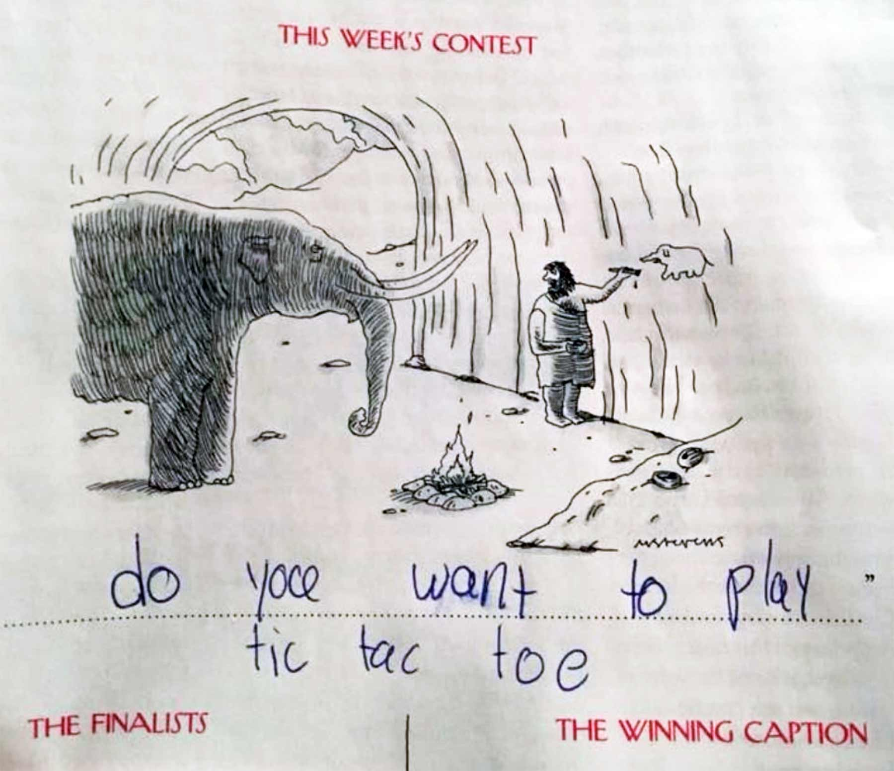 Die urkomischen Bildunterschriften einer 9-Jährigen bess-kalb-alice-kind-bildunterschriften_07
