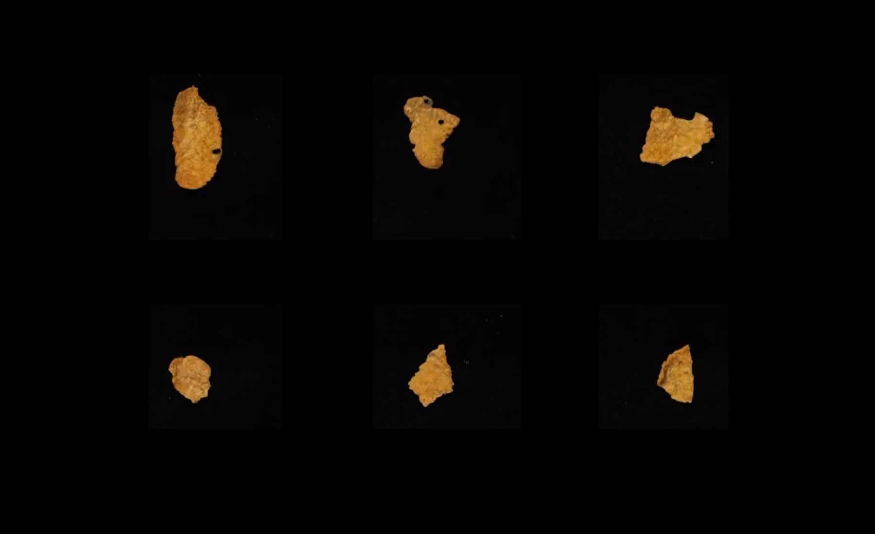Jedes einzelne Cornflake einer Packung fotografiert