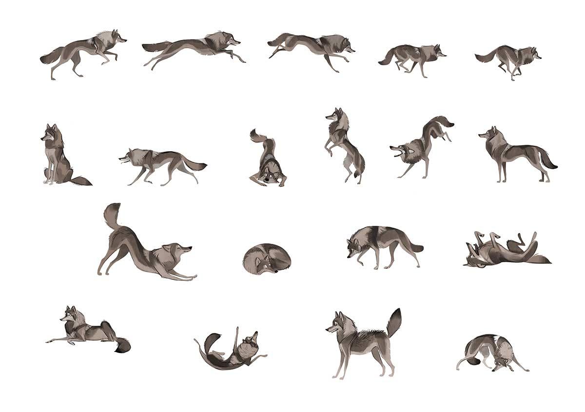 Herzliche Tierportraits von Therese Larsson Therese-Larsson_05