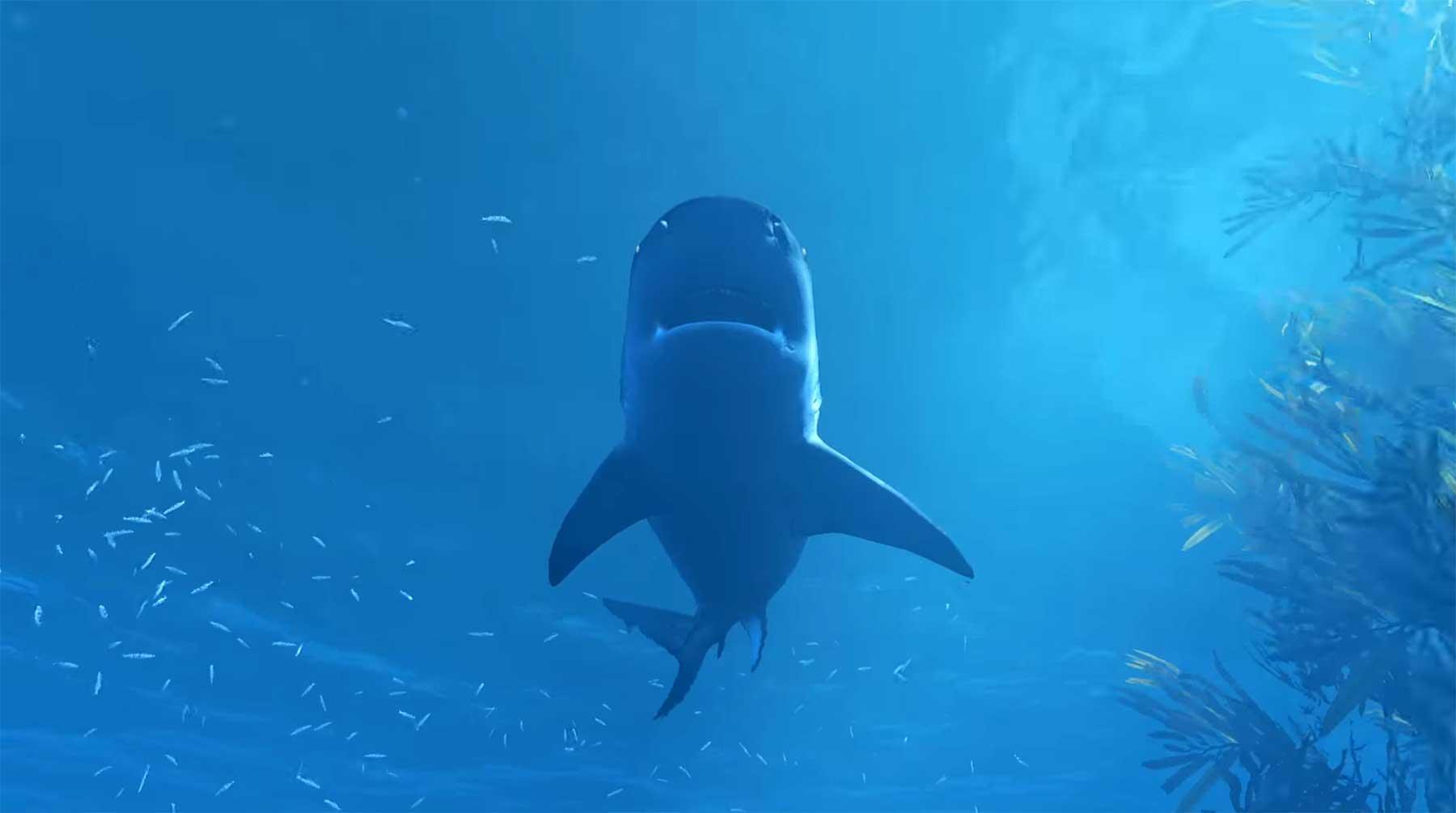 """In """"Maneater"""" spielt ihr einen Hai auf der Jagd"""