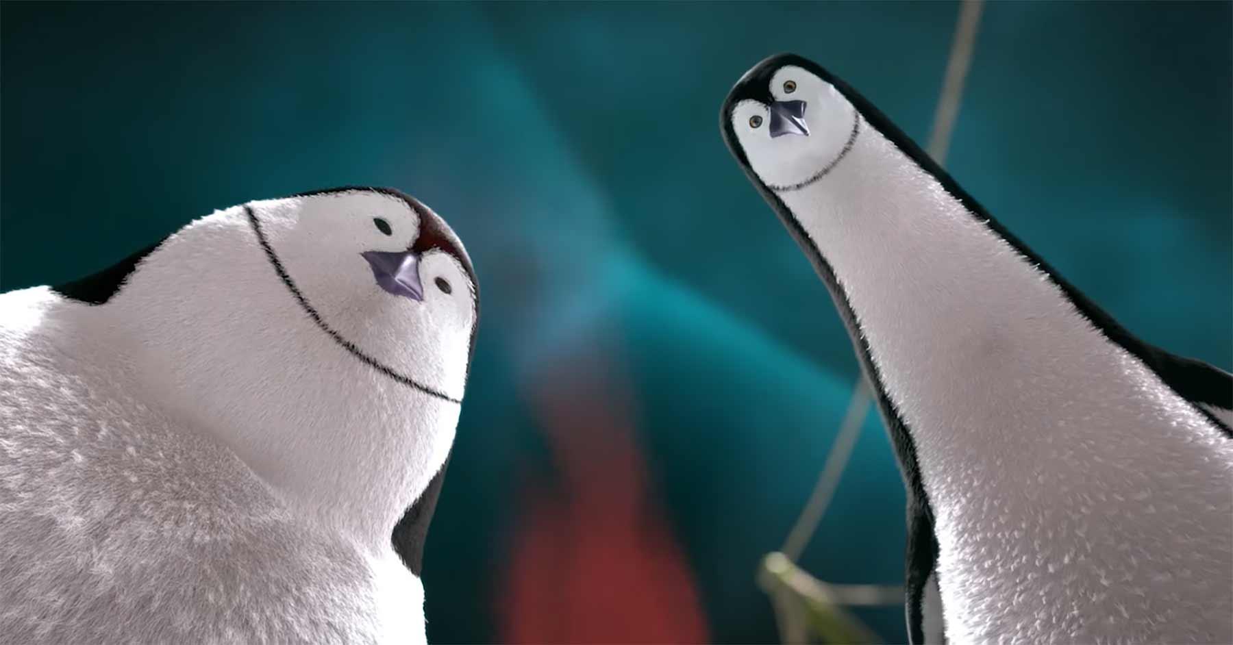 Pinguine haben Chili-Schoten für sich entdeckt