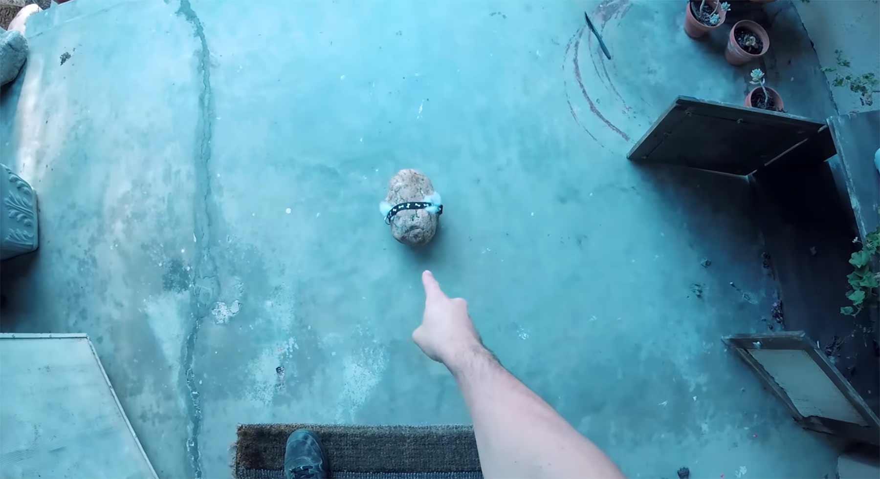 Ein Stein als Haustier