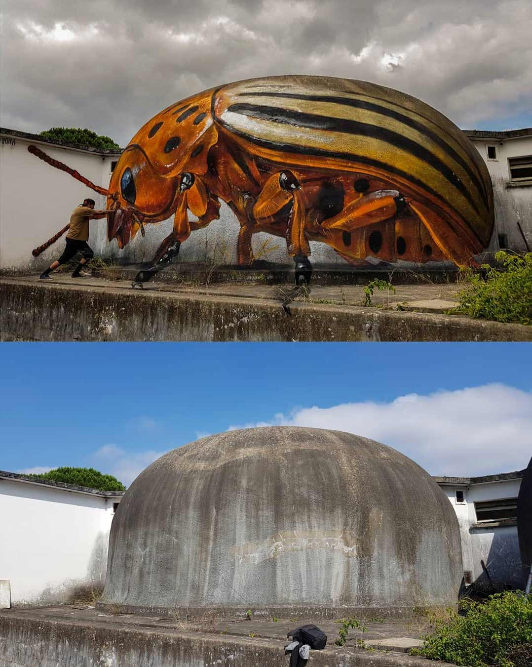 Anamorphe Riesen-Insekten von Odeith Odeith-anamorphe-insekten_07