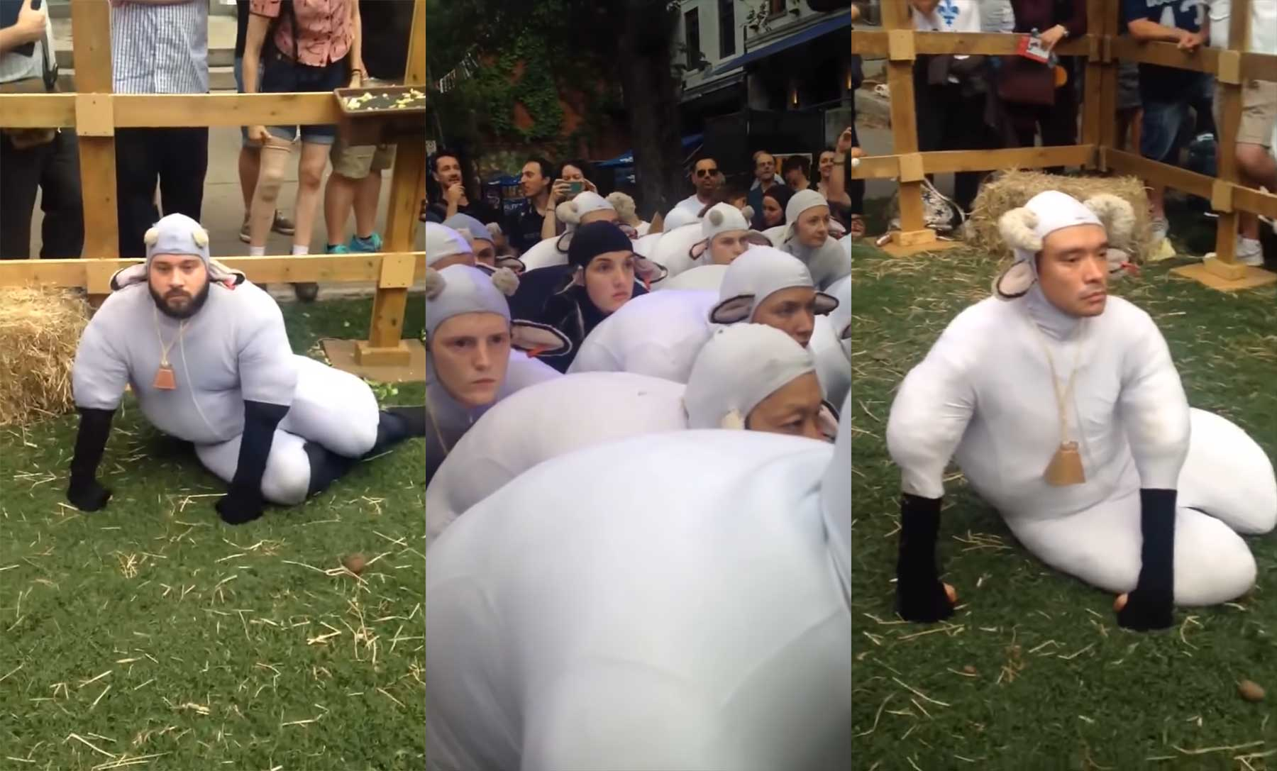Menschen, die Schafe spielen