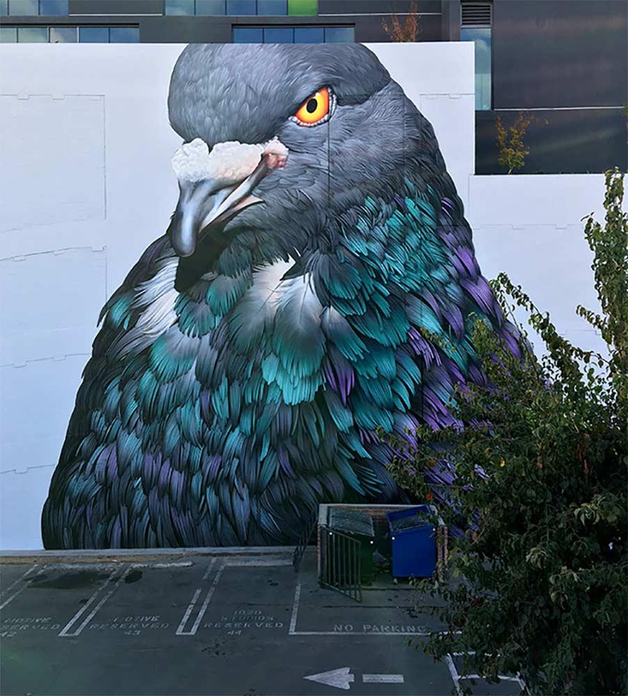 Street Art: Adele Renault Adele-Renault_07