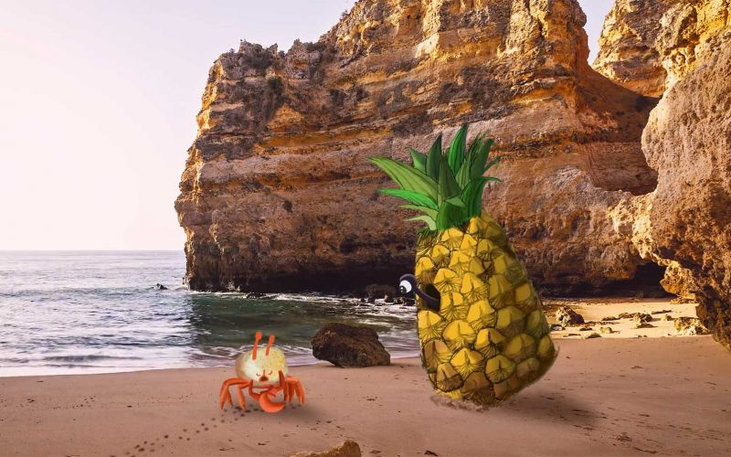 Die vergötterte Krabbe im Ananas-Haus