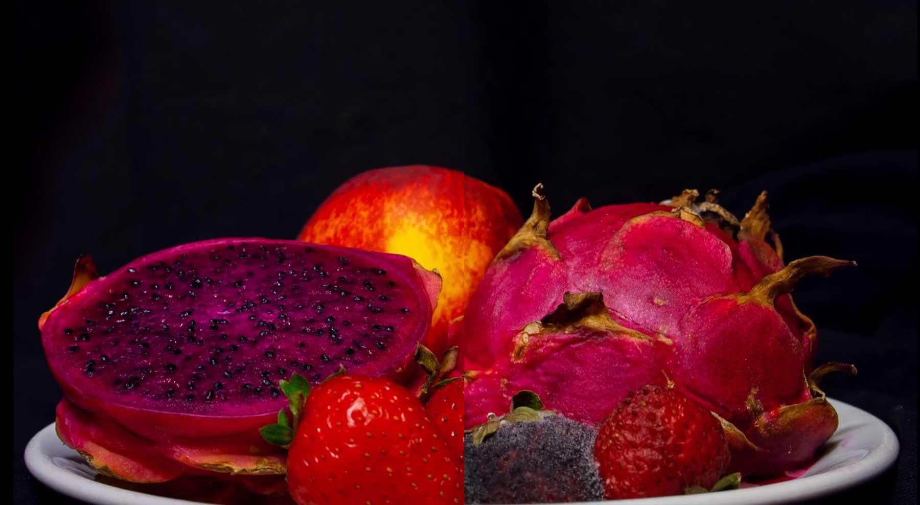 Timelapse verschimmelnder Früchte