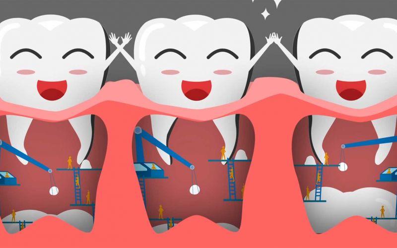 Wie entstehen eigentlich Zähne?
