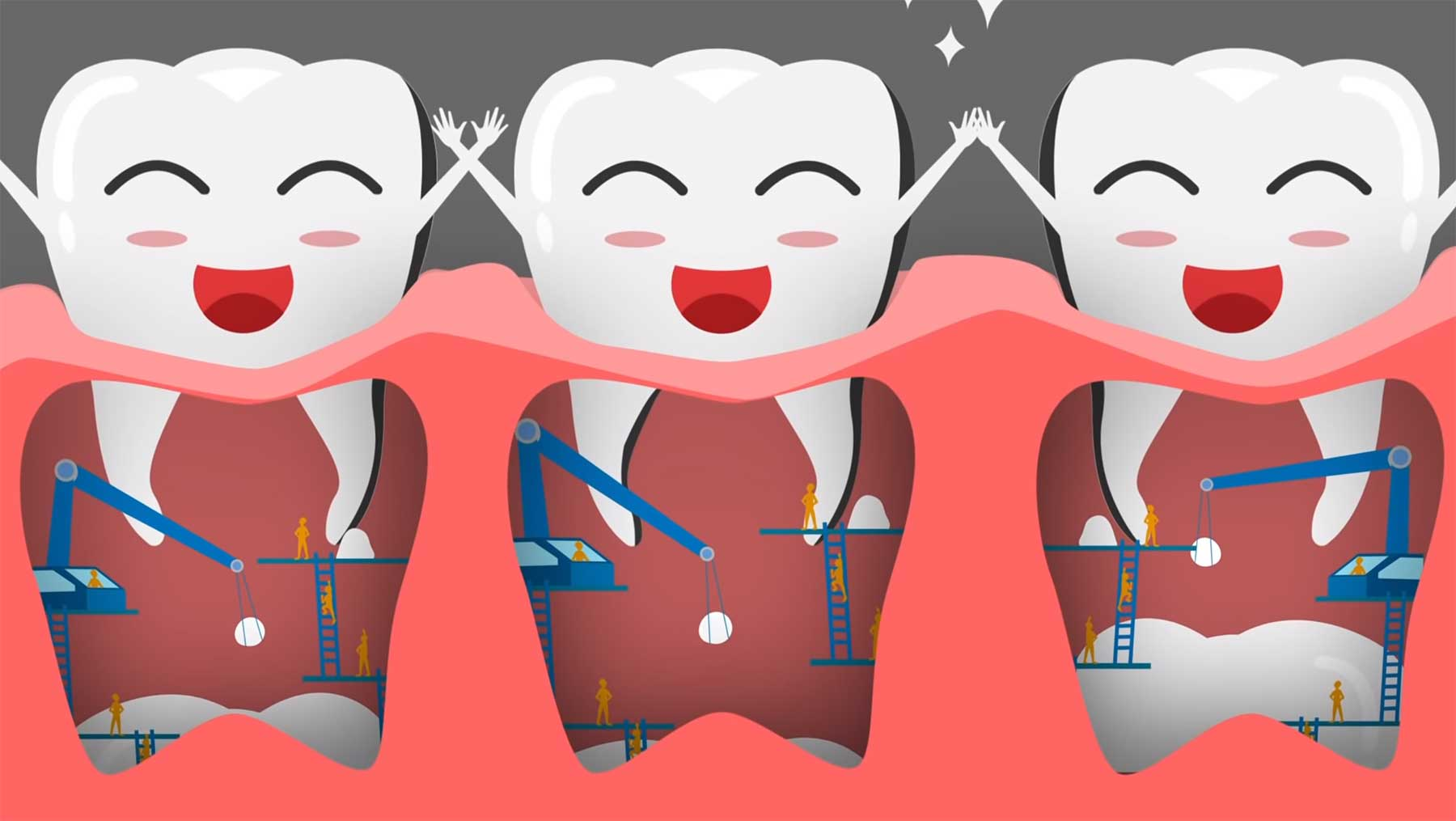 Wie entstehen eigentlich Zähne? wie-entstehen-zaehne-eigentlich