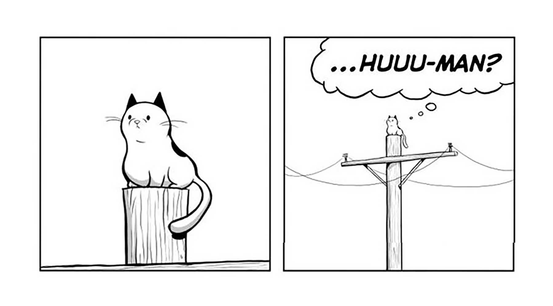Das Leben mit einer Katze im Comic