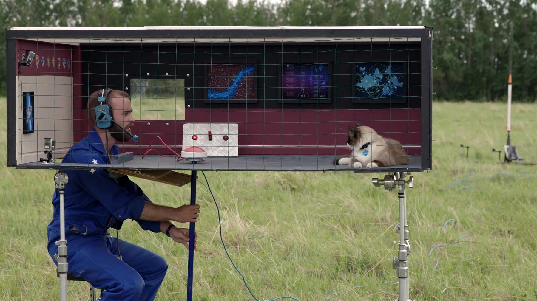 Einer Katze antrainieren, auf Kommando eine Rakete abzufeuern