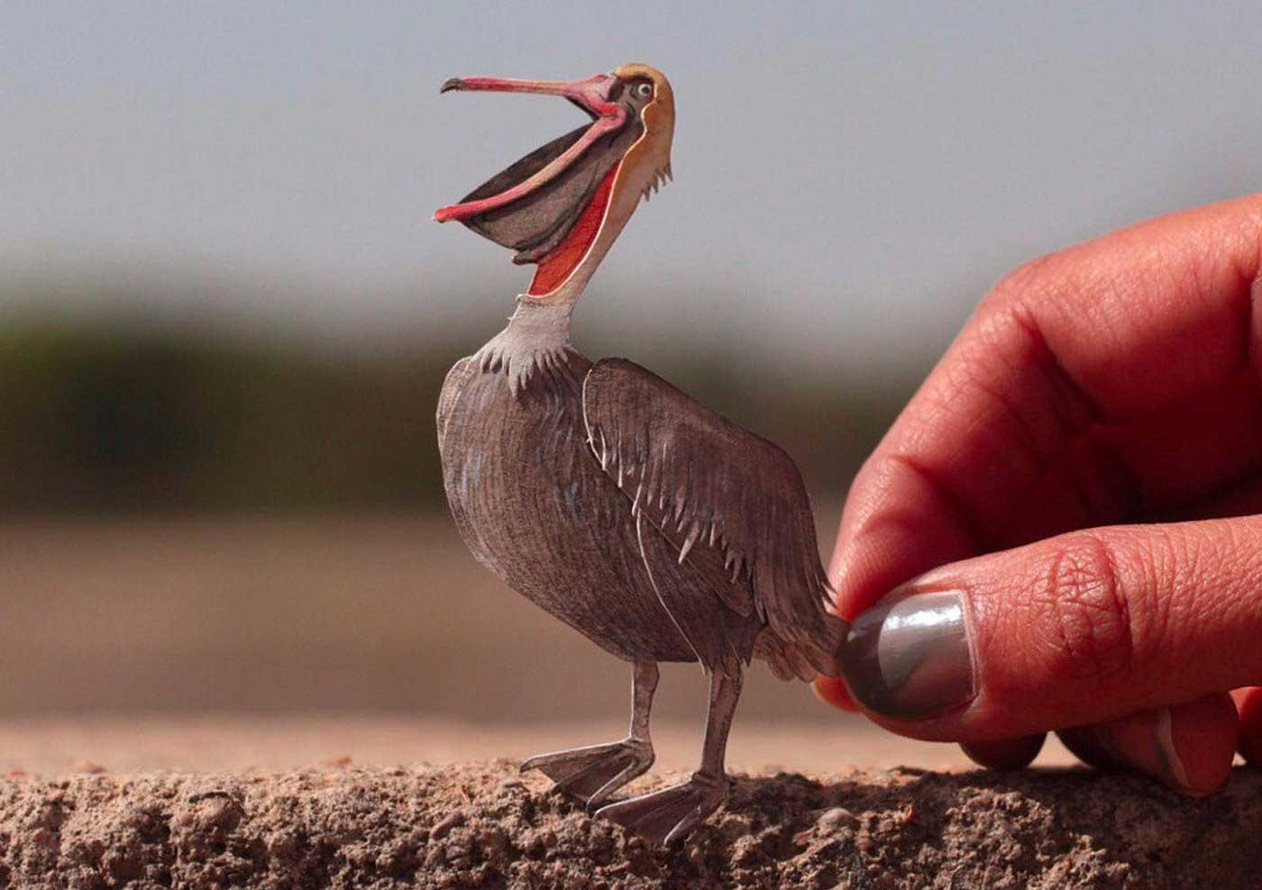 365 Papier-Vögel Nayan-and-Vaishali-miniature-birds-voegel_10