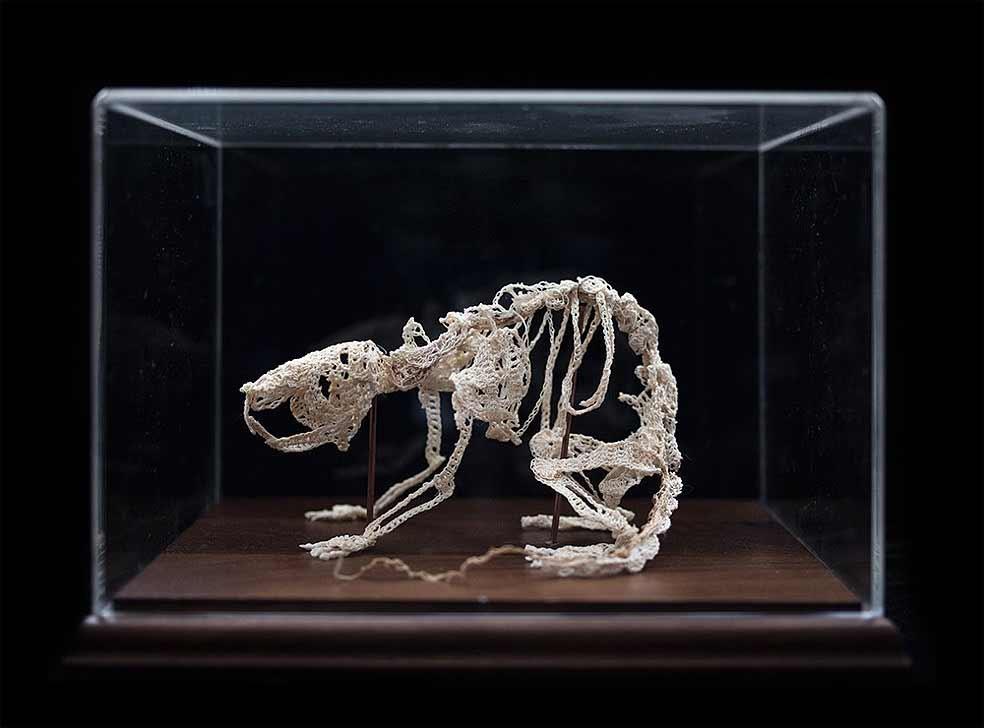 Gehäkelte Skelette von Caitlin McCormack