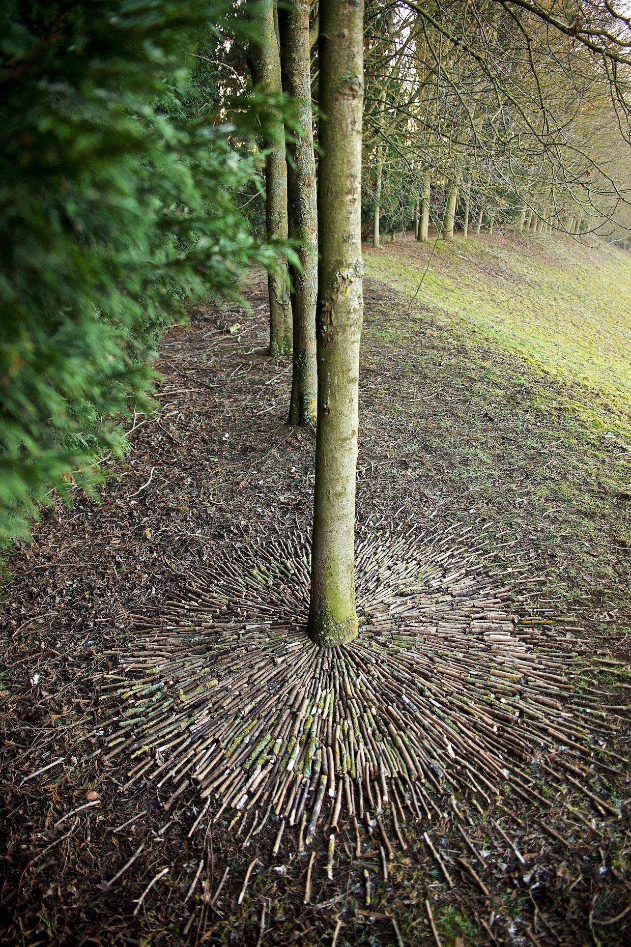 Naturkunstwerke von James Brunt James-Brunt-Nature-Art_06