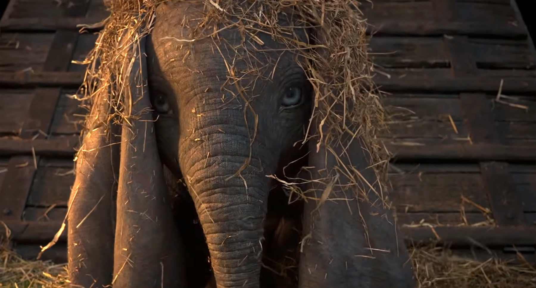 "Trailer zur neuen ""Dumbo""-Verfilmung"
