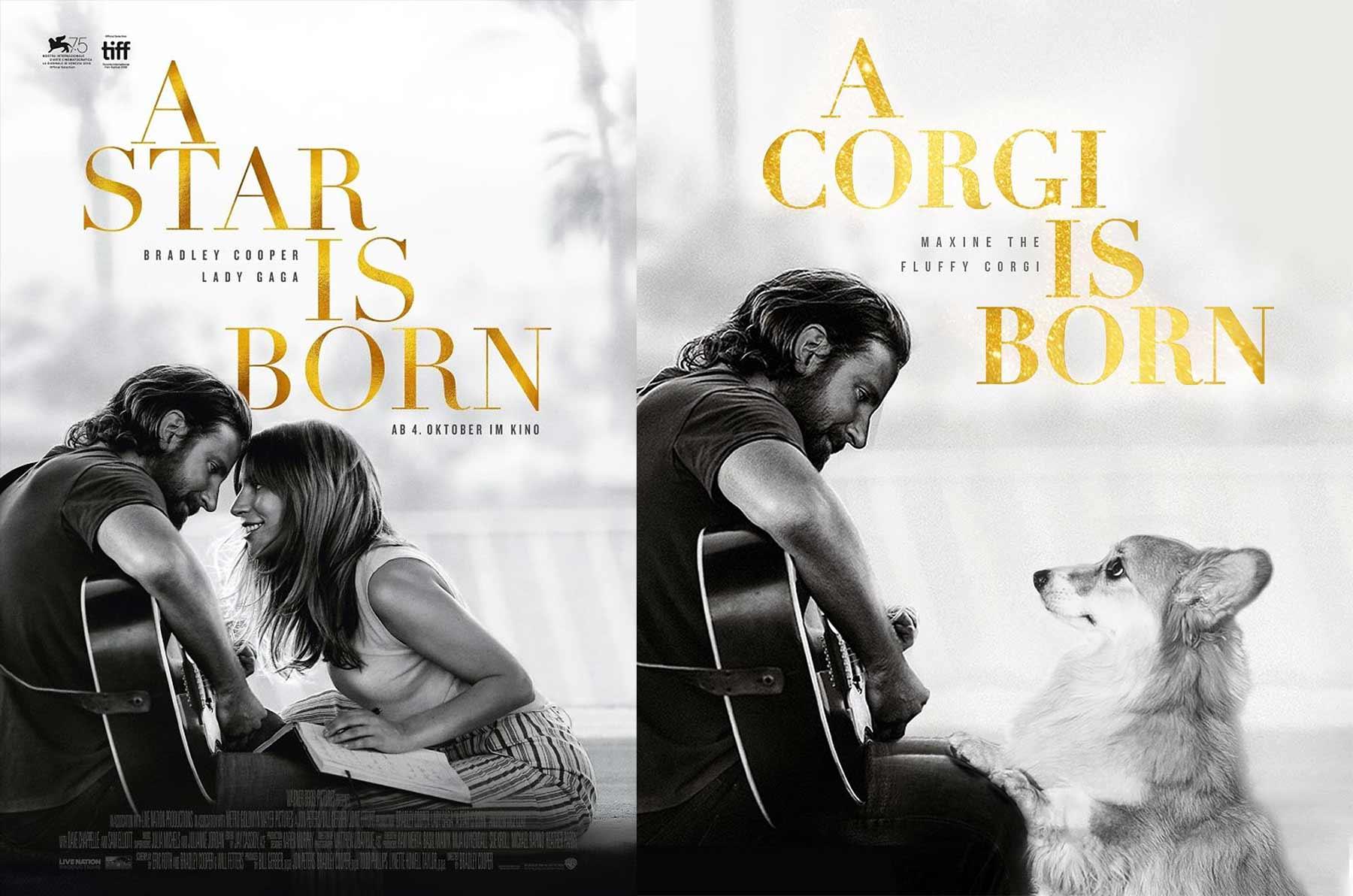 Bekannte Filmplakate mit Corgi verbessert