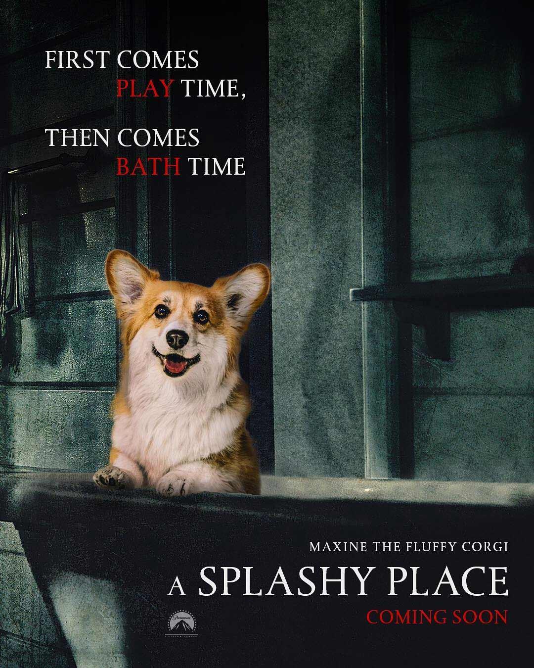 Bekannte Filmplakate mit Corgi verbessert filmposter-mit-corgi-hund_05