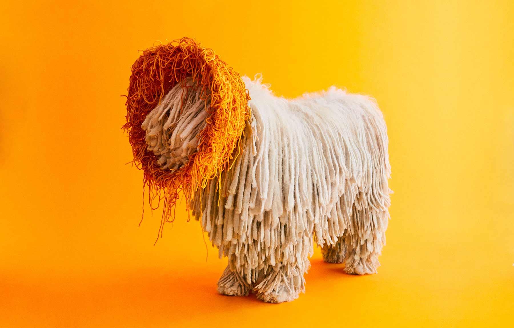 Ausgefallene Schutzkragen für Hunde cone-of-shame-winnie-au-Marie-yan-morvan_01
