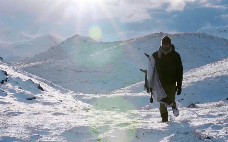 Surfen in der Arktis
