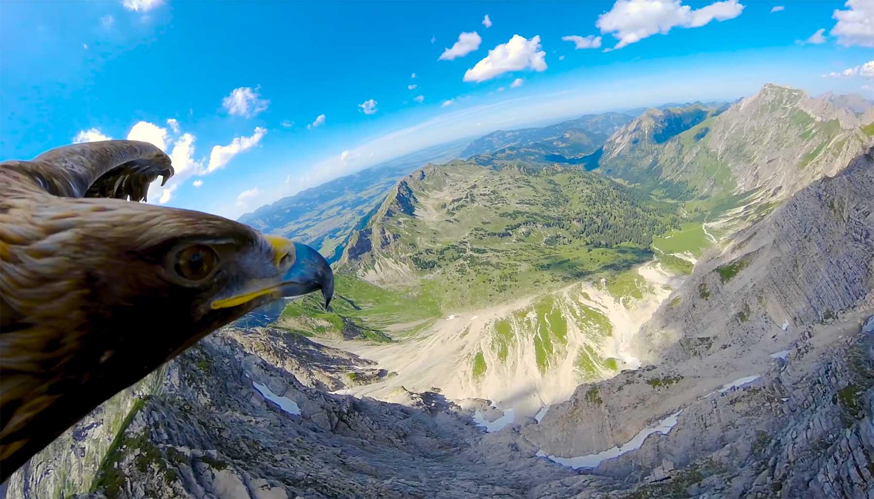 Flug über die Alpen aus der Sicht eines Adlers