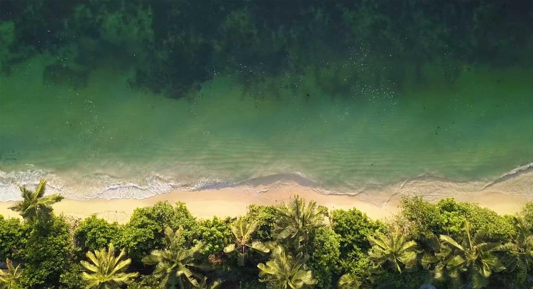 Die Schönheit der Seychellen