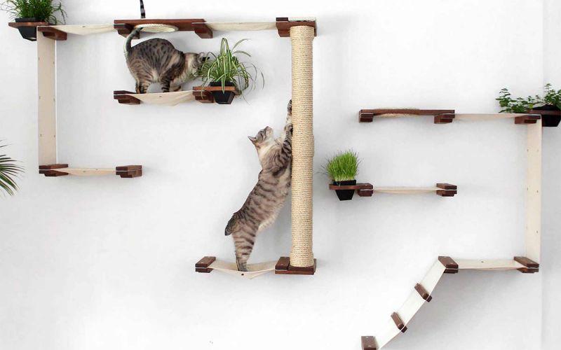 Modulares Katzenspielplatz-System für die Wand