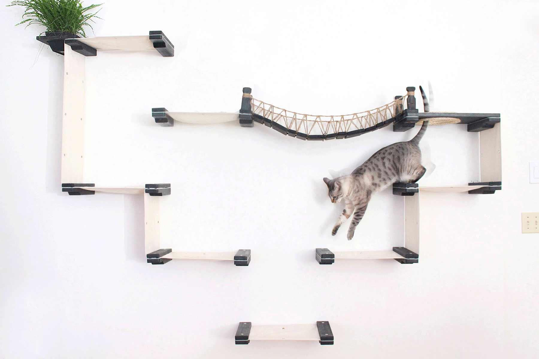 Modulares Katzenspielplatz-System für die Wand CatastrophiCreations-katzenspielplatz-wand-system_03