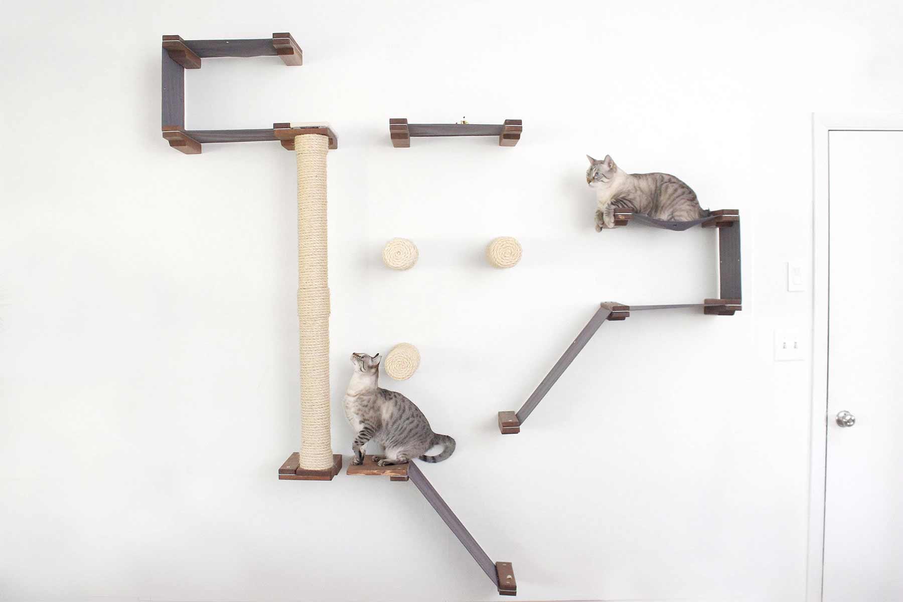 Modulares Katzenspielplatz-System für die Wand CatastrophiCreations-katzenspielplatz-wand-system_06