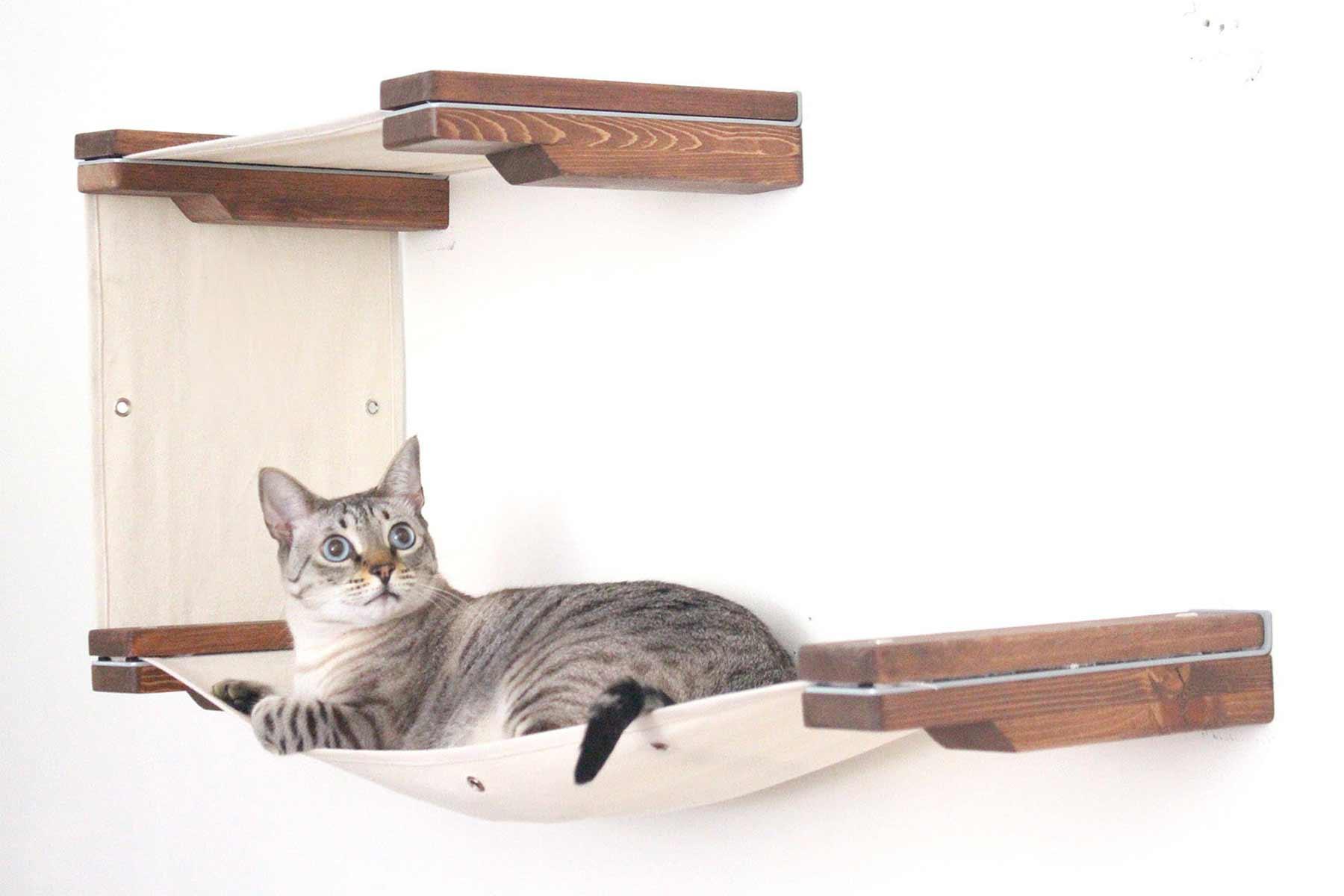Modulares Katzenspielplatz-System für die Wand CatastrophiCreations-katzenspielplatz-wand-system_07