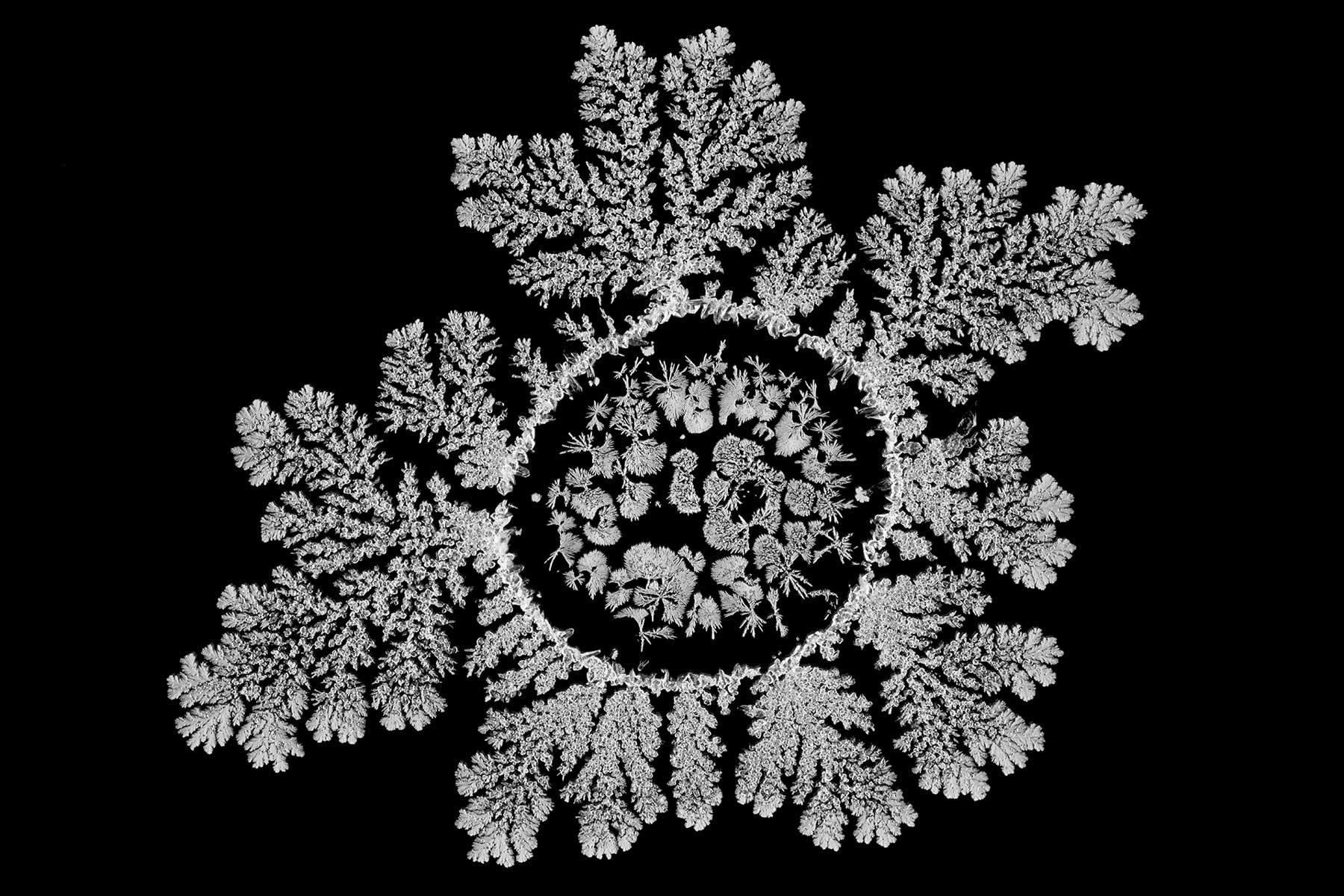 Wunderschöne Salz-Kristallisations-Muster
