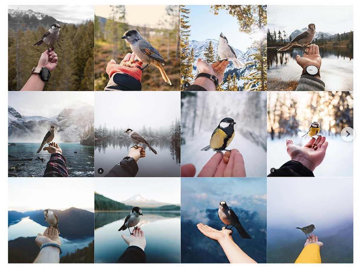 Auf Instagram gibt es nur noch die gleichen Bilder zu sehen Insta-Repeat_07