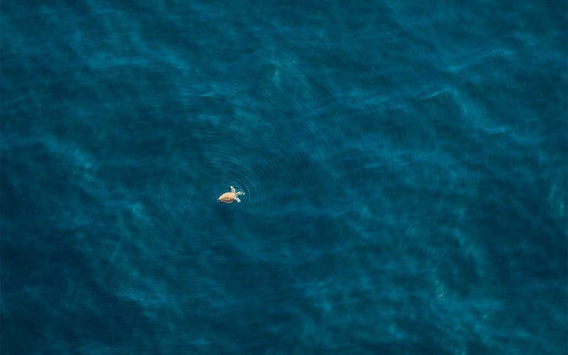 Tolle Luftaufnahmen von Zack Seckler