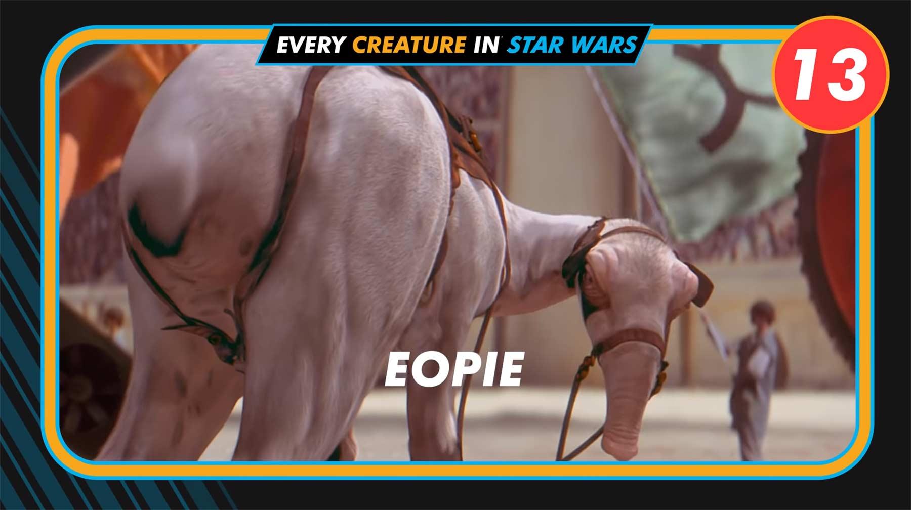 """Wie viele Kreaturen gibt es in den """"Star Wars""""-Filmen?"""