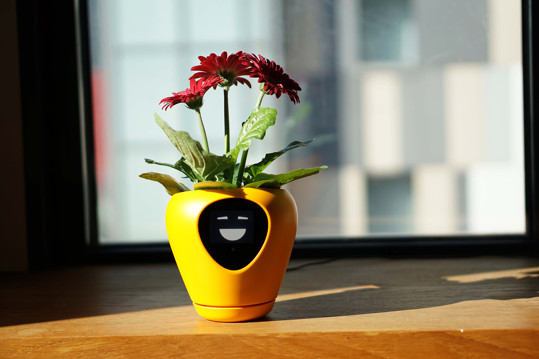 Diese Blumentöpfe machen Pflanzen zu Tamagotchis