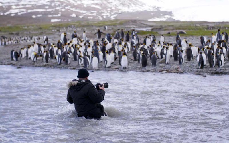 Unterwegs mit einem Pinguin-Fotografen
