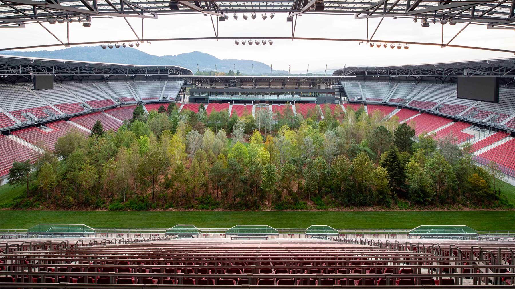Ein Fußballstadion voller Bäume