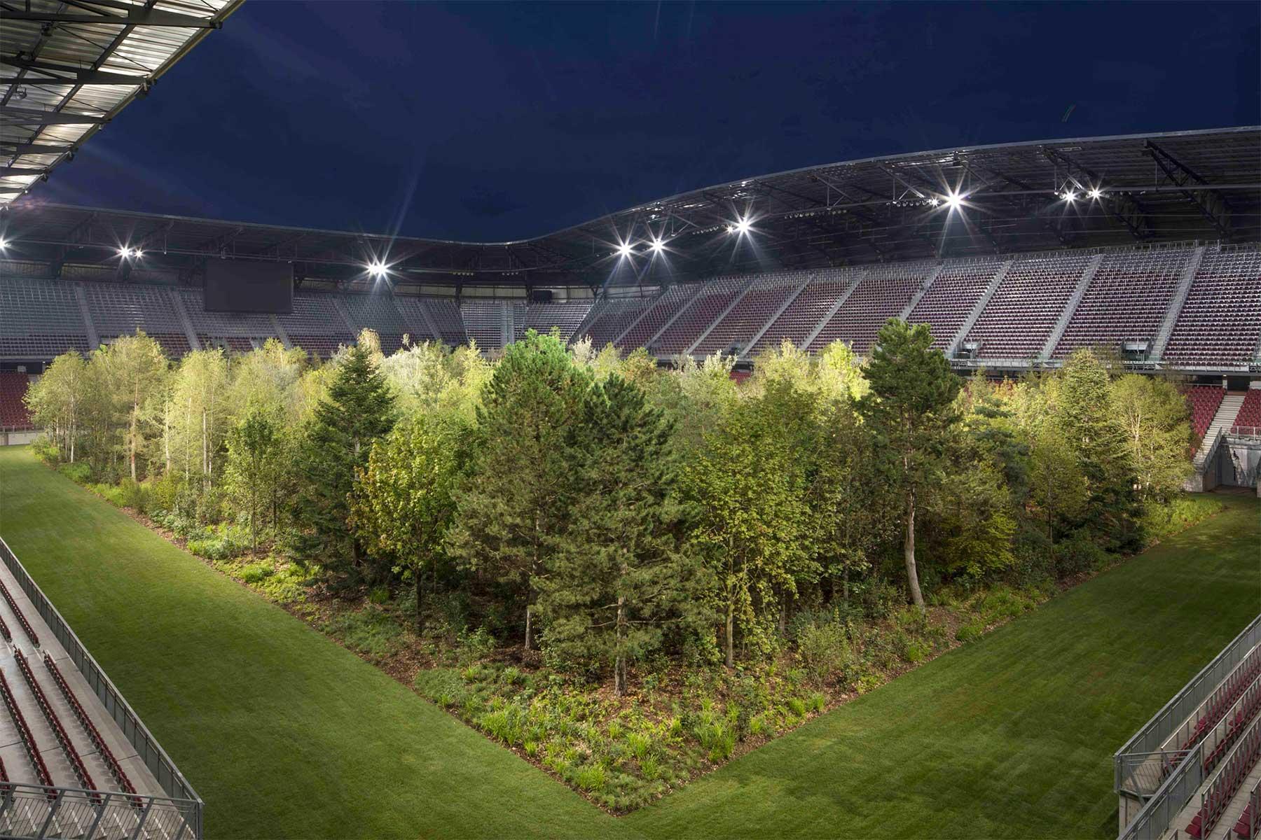 Ein Fußballstadion voller Bäume stadion-voller-baume-mit-wald_03
