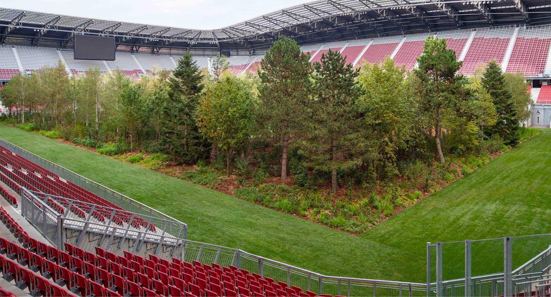 Ein Fußballstadion voller Bäume stadion-voller-baume-mit-wald_05