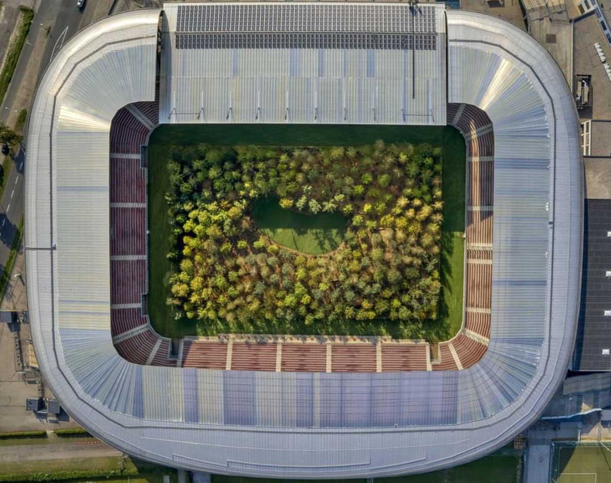 Ein Fußballstadion voller Bäume stadion-voller-baume-mit-wald_07