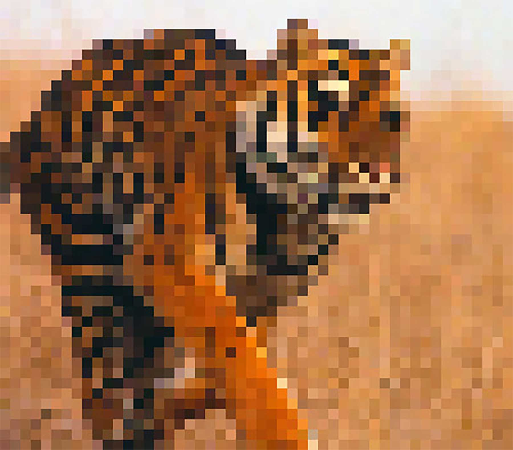 Tierbilder aus so vielen Pixeln, wie es noch Exemplare der Art auf der Welt gibt