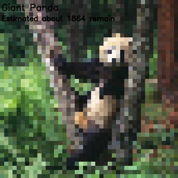 Tierbilder aus so vielen Pixeln, wie es noch Exemplare der Art auf der Welt gibt bedrohte-tierarten-aus-pixeln_12