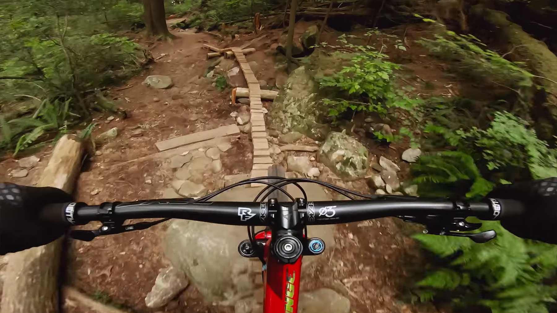 POV-Mountainbike-Fahrt durch den Wald