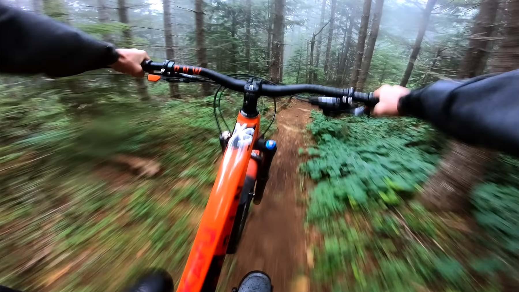 Kleine Waldabfahrt mit Mark Matthews foggy-forest-mtb-pov