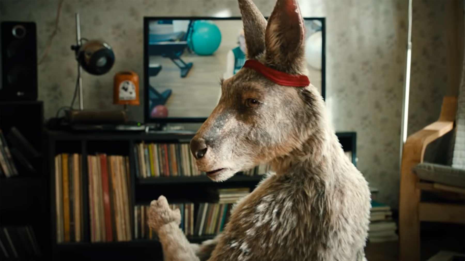 """Neuer Trailer zum """"Die Känguru Chroniken""""-Film"""