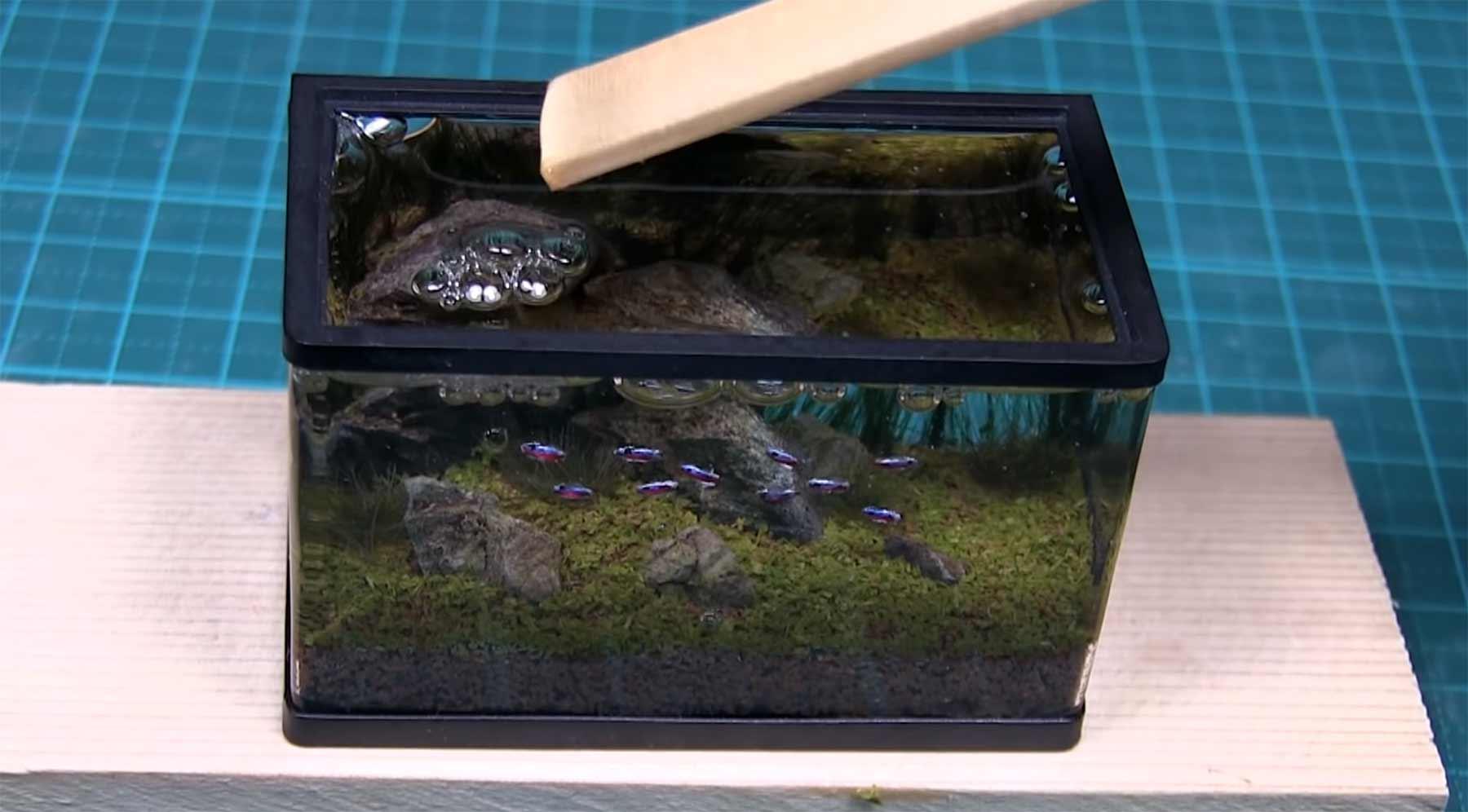 Herstellung eines Miniatur-Aquariums
