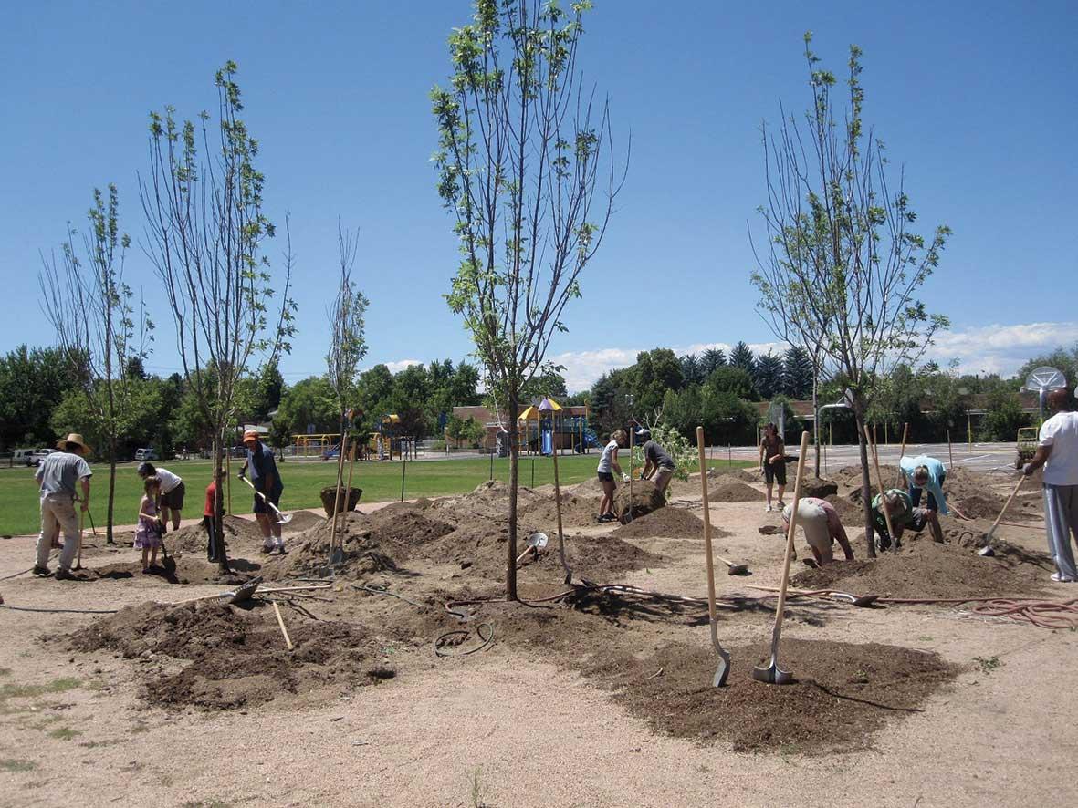 Pedro Reyes hat 1.527 Pistolen eingeschmolzen und Schaufeln zum Bäumepflanzen gegossen schaufeln-aus-waffen_05