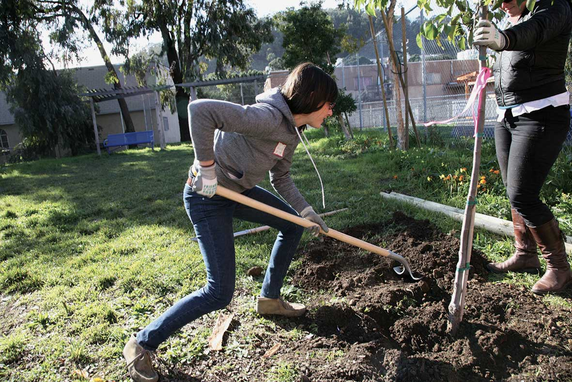 Pedro Reyes hat 1.527 Pistolen eingeschmolzen und Schaufeln zum Bäumepflanzen gegossen schaufeln-aus-waffen_06